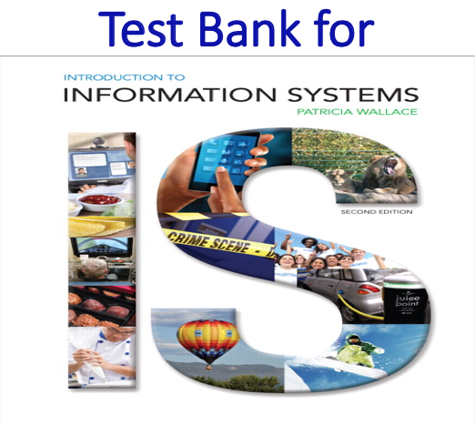 Test bank for Introduction to Information Systems 2nd Edition by Patricia Wallace