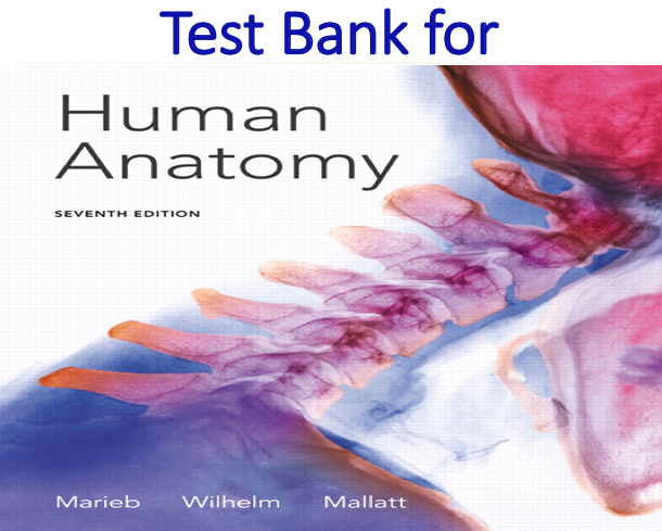 Test Bank for Human Anatomy 7th Edition